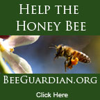 Support Bee Guardian
